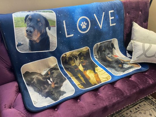 all of the love in the galaxy dog blanket