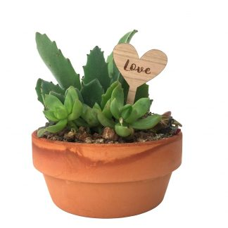 wood heart indoor planter stake