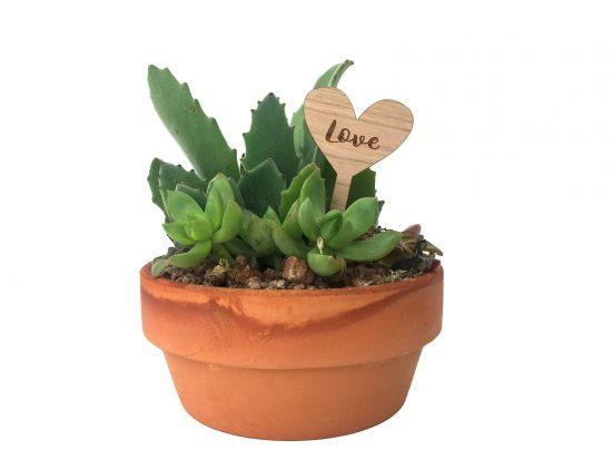 wood heart indoor planter stake