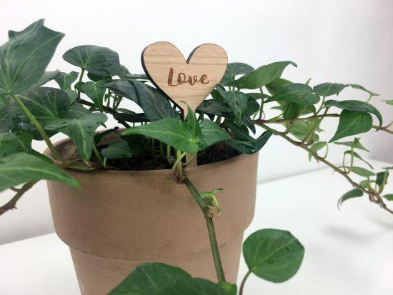 indoor garden wood heart stake